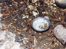 散乱した遺骨やお椀の後ろにある 錆びた鎌の刃